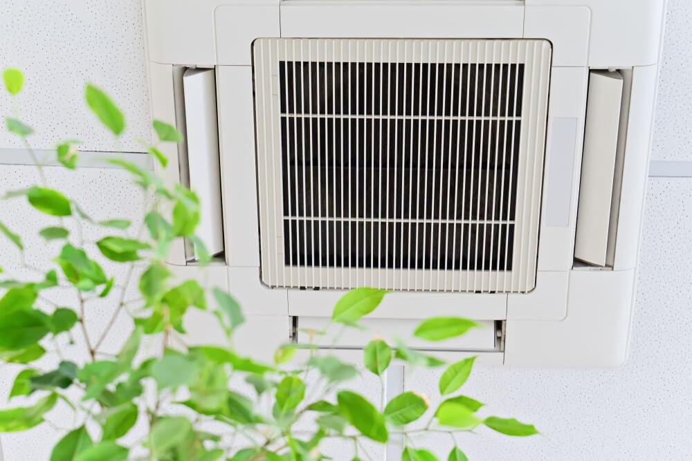 Zašto je bitno da prečistite vazduh